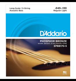 Daddario 5-String Acoustic Bass Strings 45-130