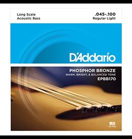 Daddario Daddario Acoustic Bass, 45-100