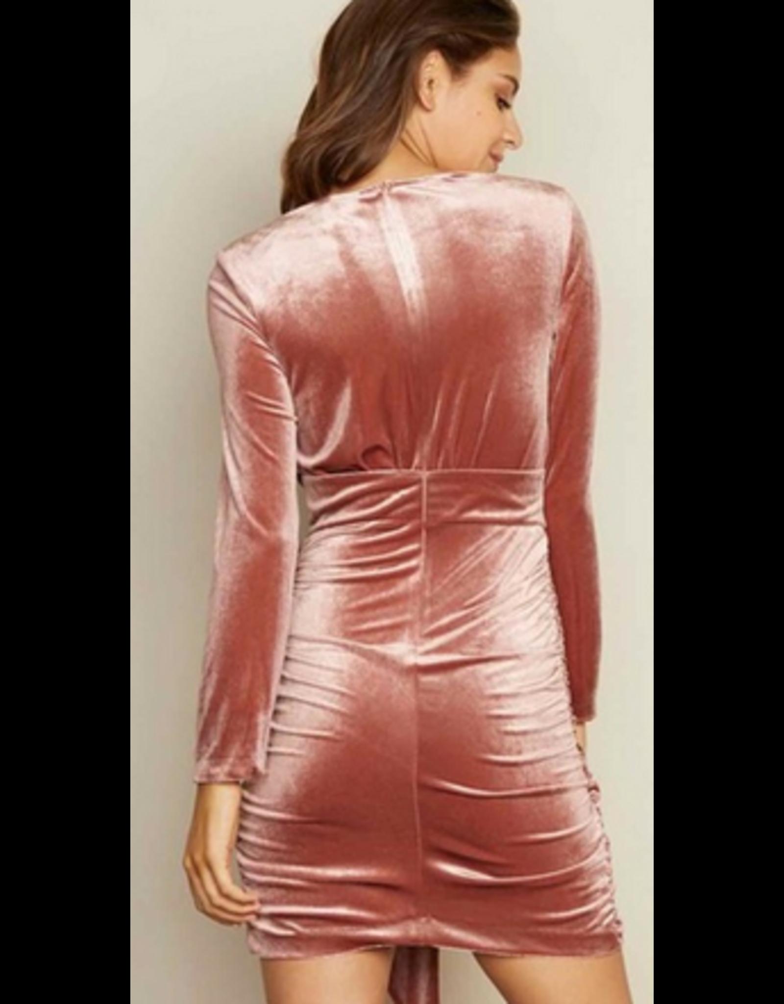 DRESS FORUM Velour long sleeve mini