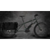 Surly Surly Big Easy, Deep Forest Green, Small