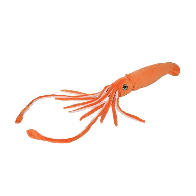 Jet stream squid