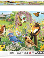Garden Birds Panorama
