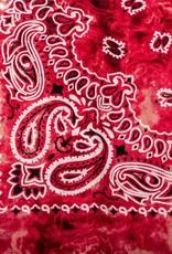 Cherie Cherie Bandana Printed Scarf Pretied with Velvet Grip