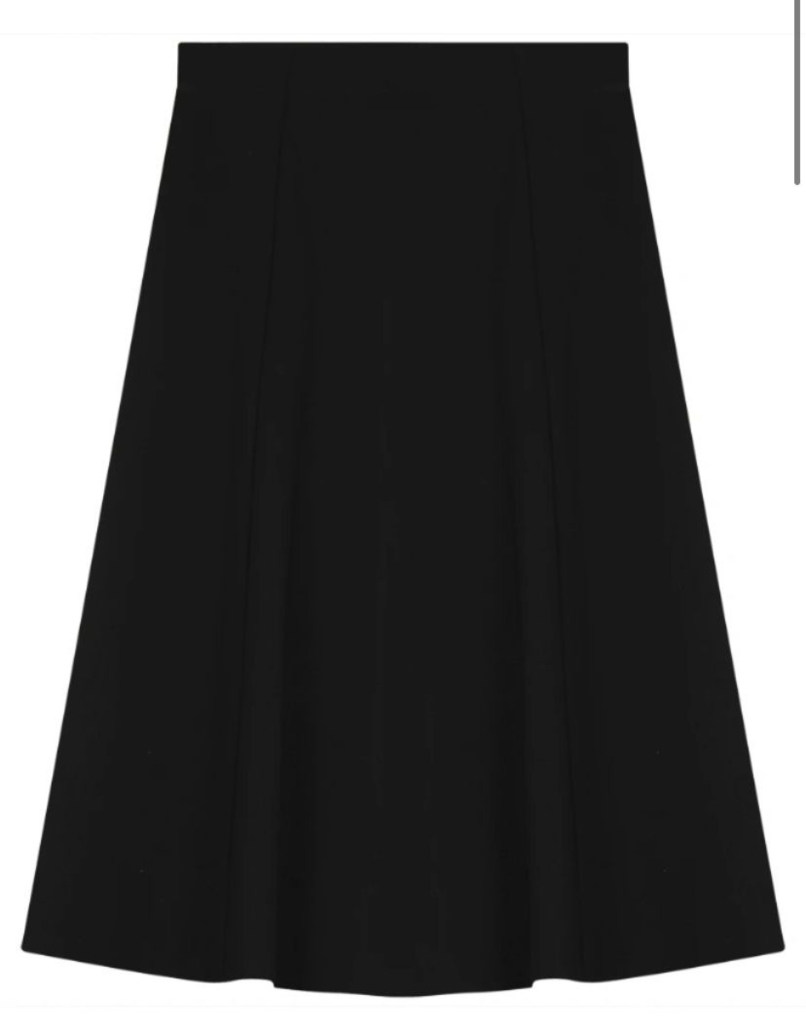 Ginger Ginger Paneled Flare Skirt