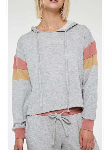 PROJECT SOCIAL T Cooper Colorblocked Hoodie