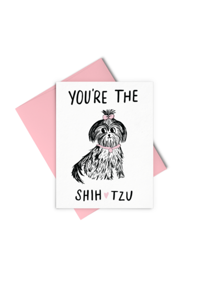 Talking out of Turn You're The Shih Tzu