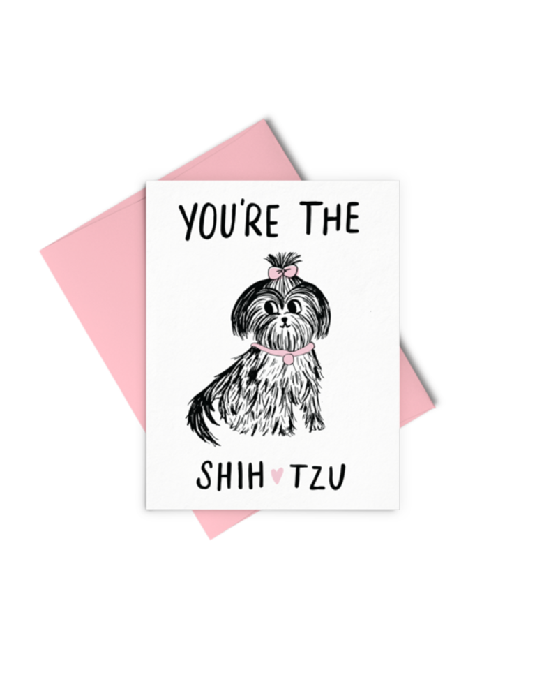 Talking out of Turn Talking out of Turn You're The Shih Tzu