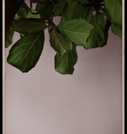 Green Leaves - 50cmx70cm