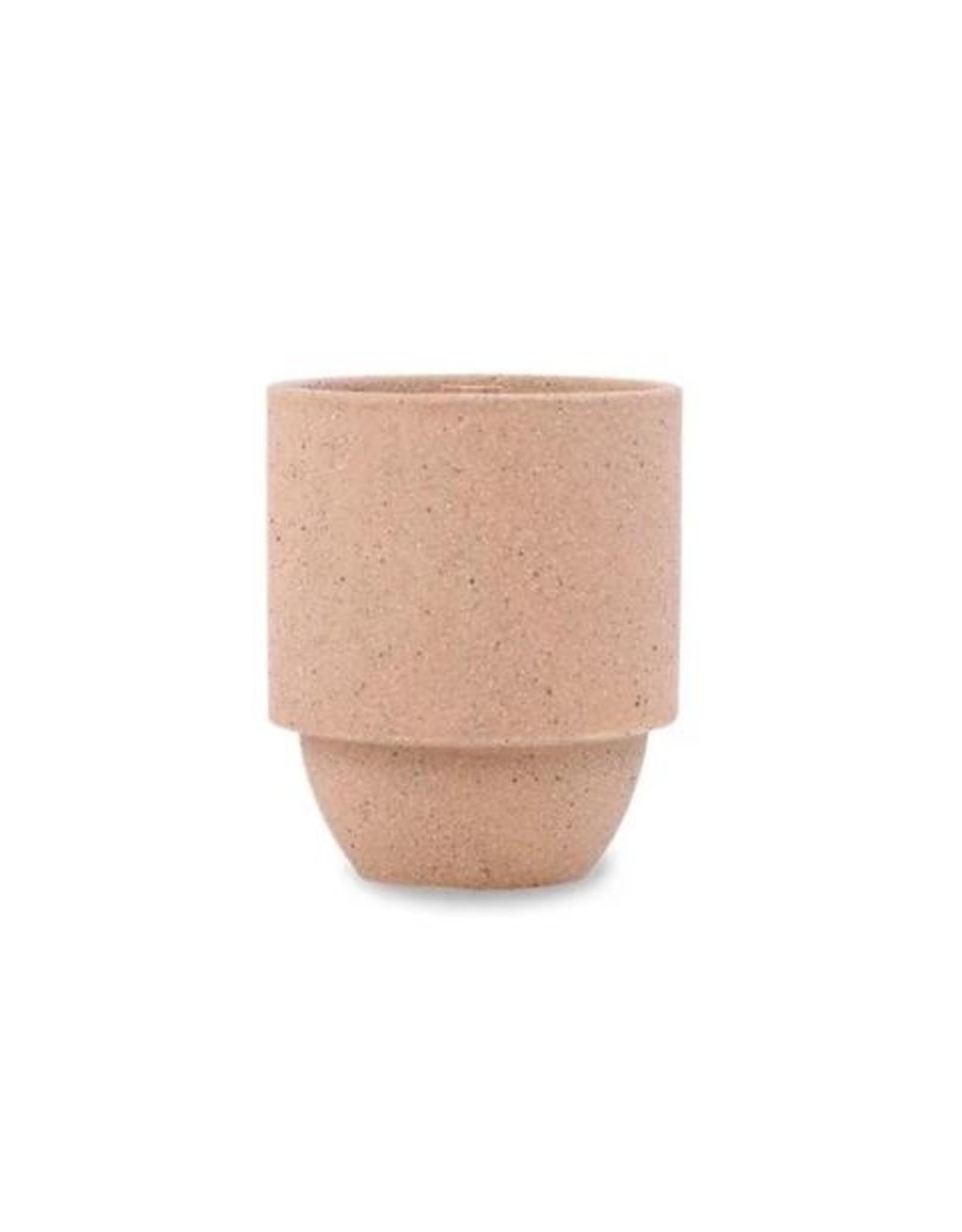 Paddywax Sagebrush + Fir Candle 11 oz