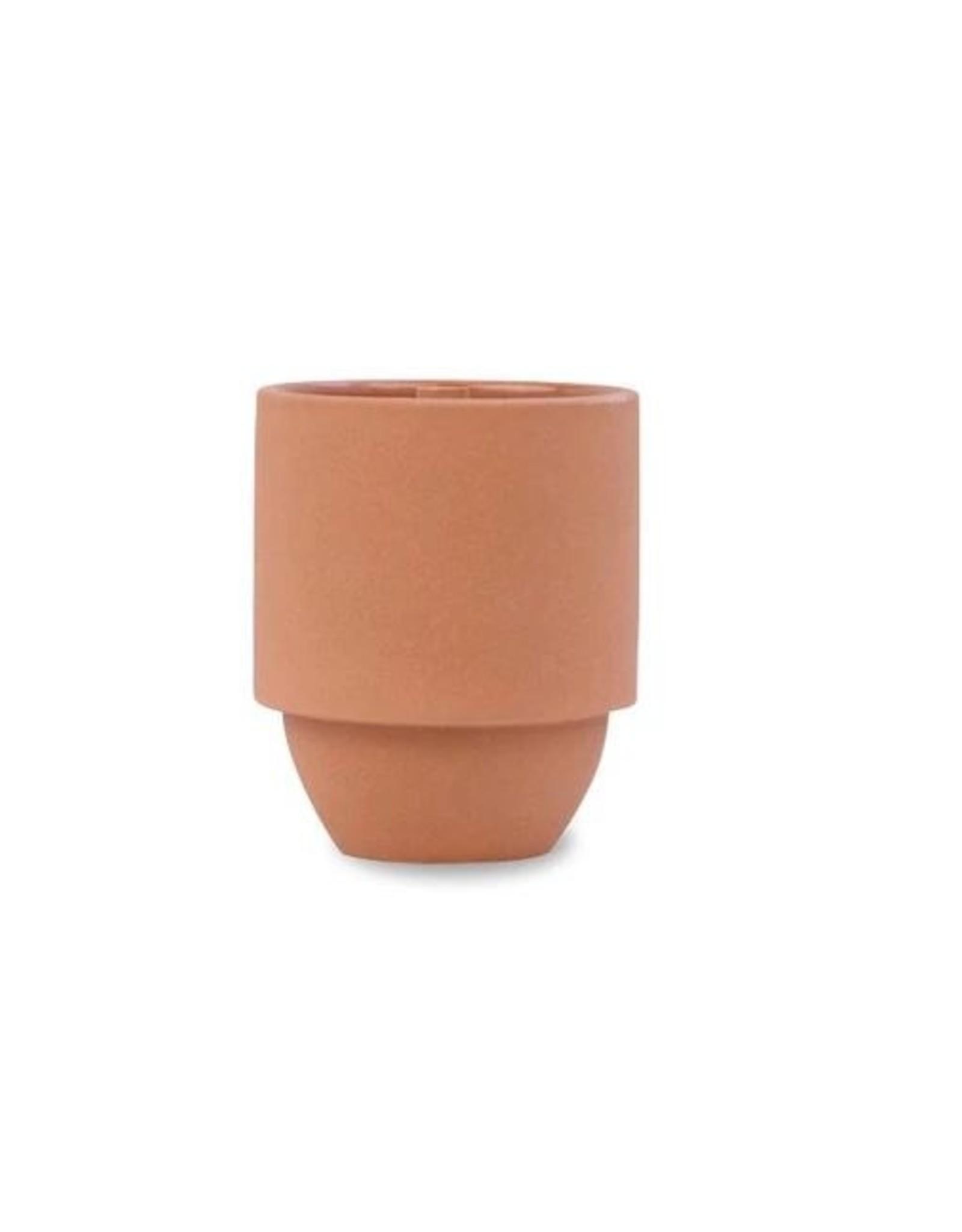 Cactus Flower + Fern  Candle 11oz