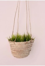 Hanging Baskets Mini