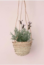 Hanging Basket - Tiny