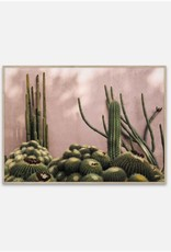 Affiche Plants on Pink - 50cmx70cm