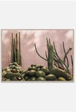 Plants on Pink - 50cmx70cm