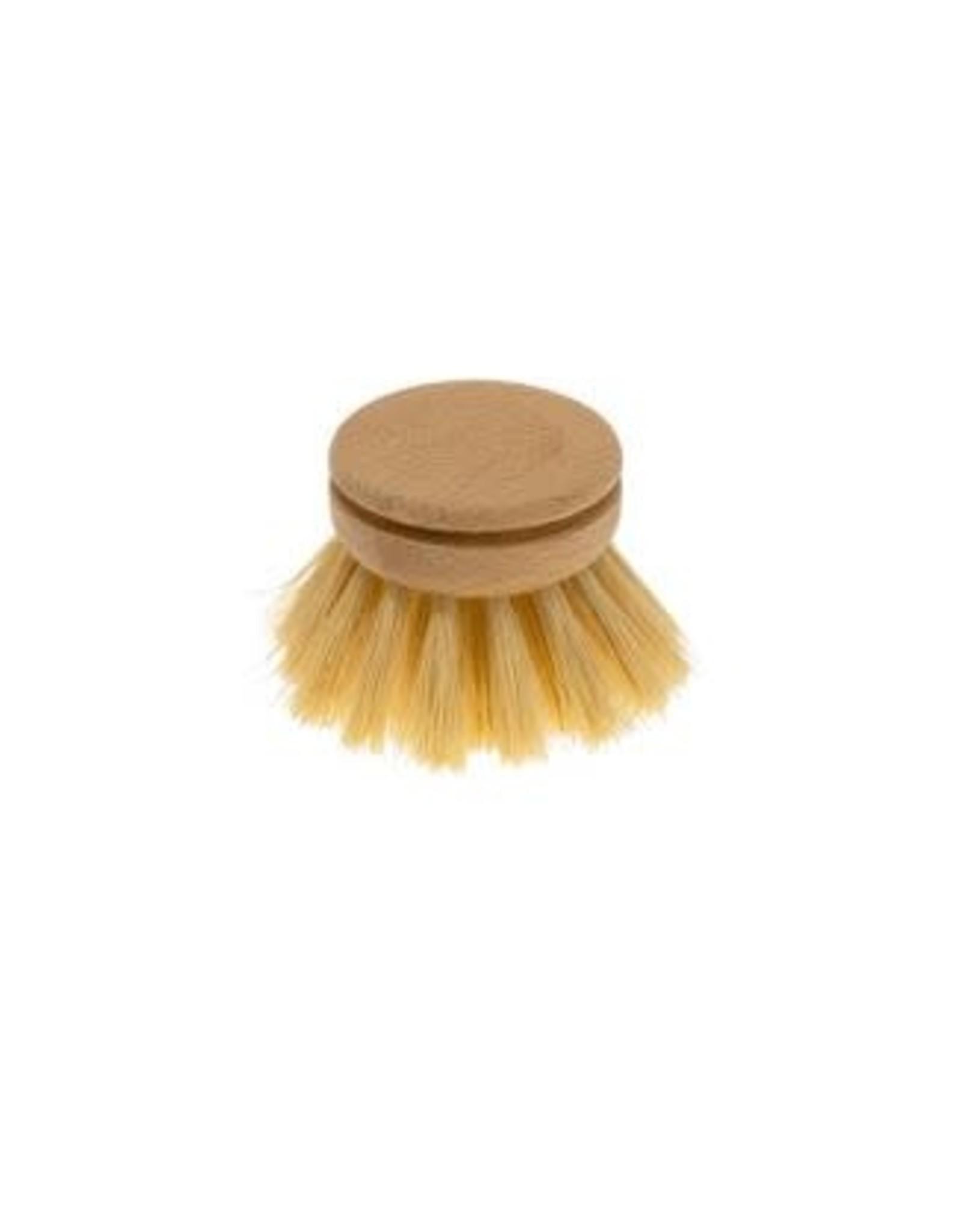 Dishbrush Everyday Refill - Tampico Fibre