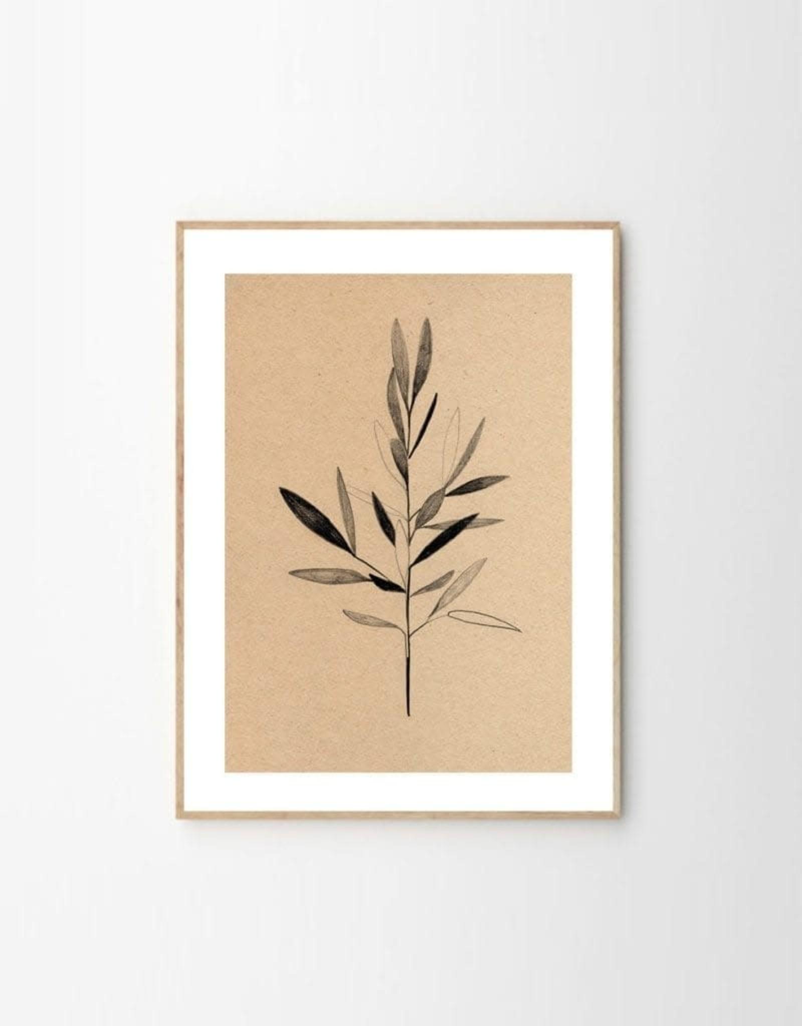 The Poster Club Affiche Olive - par Ekaterina Koroleva - 30x40 cm