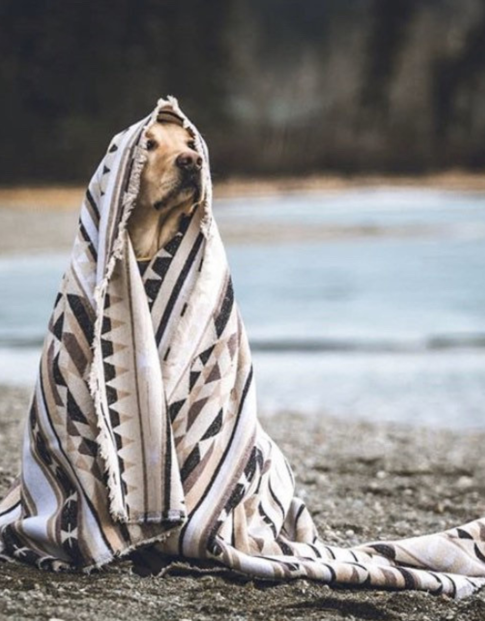 Modest Maverick Tofino Beach Blanket - Summit