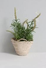 Teeny Tiny Basket