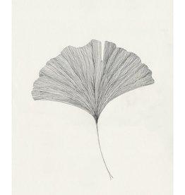 The Poster Club Affiche Grinko Leaf par Ana Frois - 50x 70cm