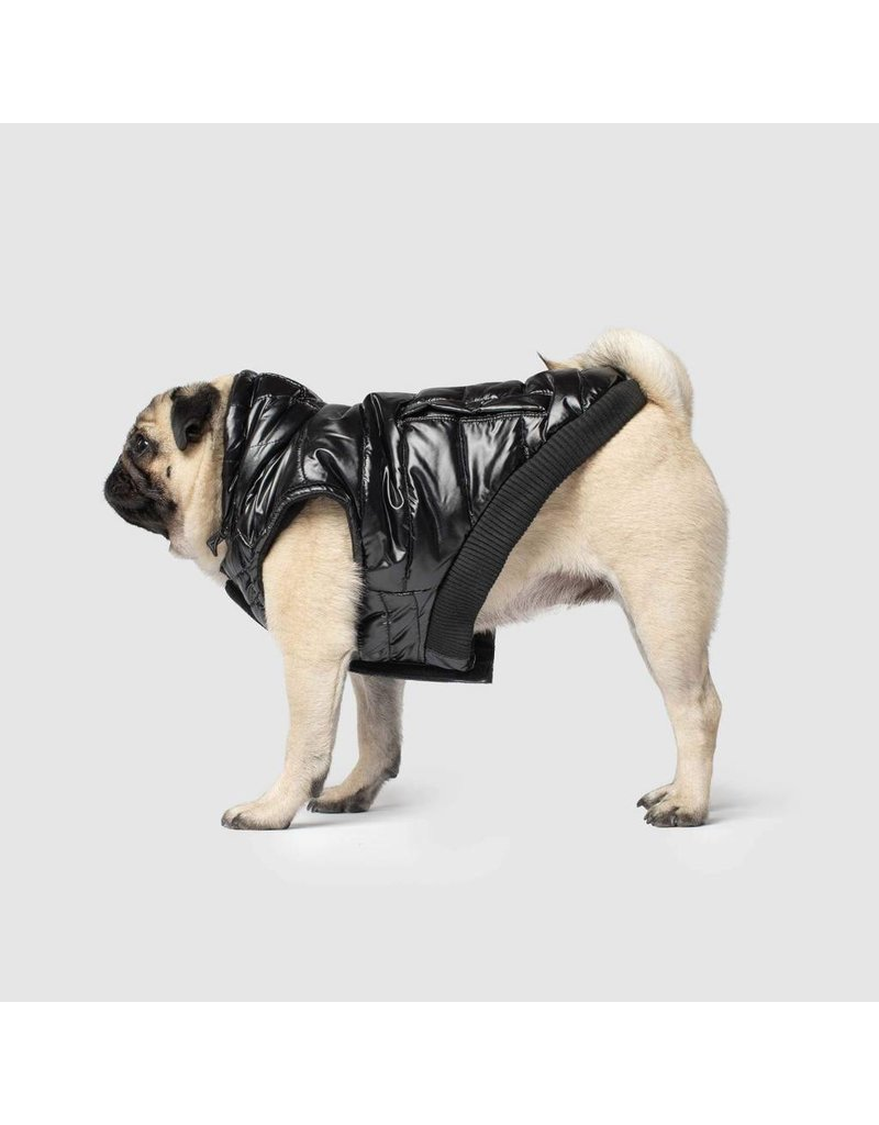 CANADA POOCH CANADA POOCH Shiny Puffer Vest Black