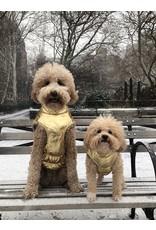 Fab Dog FAB DOG Gold Metallic Puffer