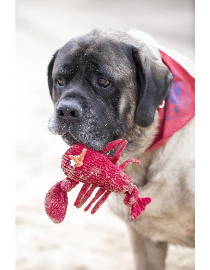 HUGGLEHOUNDS HUGGLEHOUNDS Lobster Knottie Toy