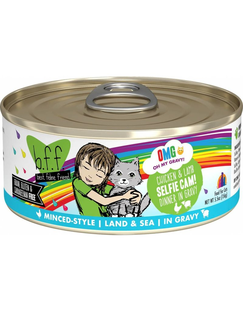 Weruva BFF OMG Chicken & Lamb Selfie Cam Canned Cat Food Case