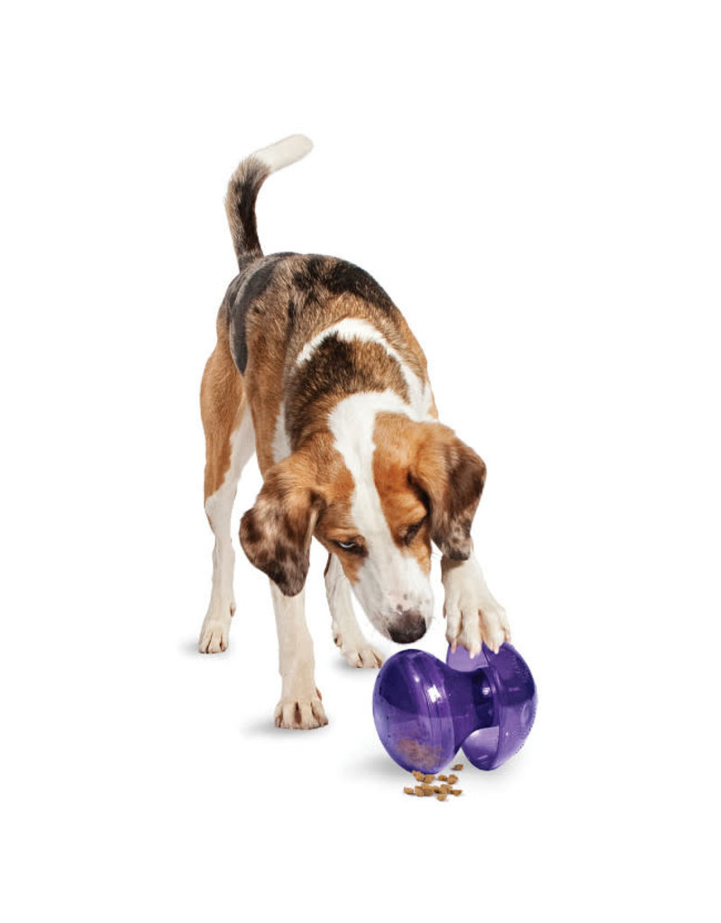 PETSAFE BUSY BUDDY Magic Mushroom M/L