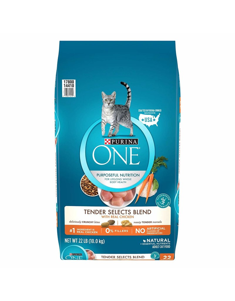 PURINA PURINA ONE Chicken & Rice Dry Cat Food 22lb.
