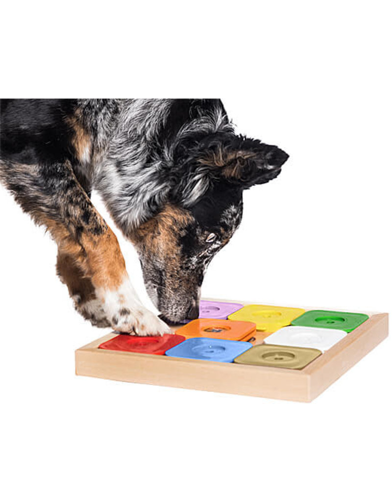 My Intelligent Pets MY INTELLIGENT PETS Dog Sudoku Medium Genie