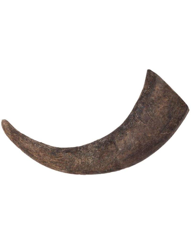 Diggin Your Dog DIGGIN YOUR DOG Buba Water Buffalo Horn