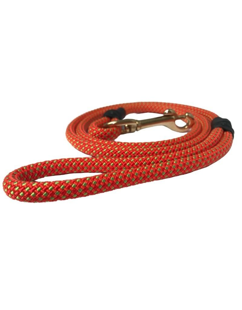 Fiddlehead Products MAINELY PAWZ Fusion Dog Leash