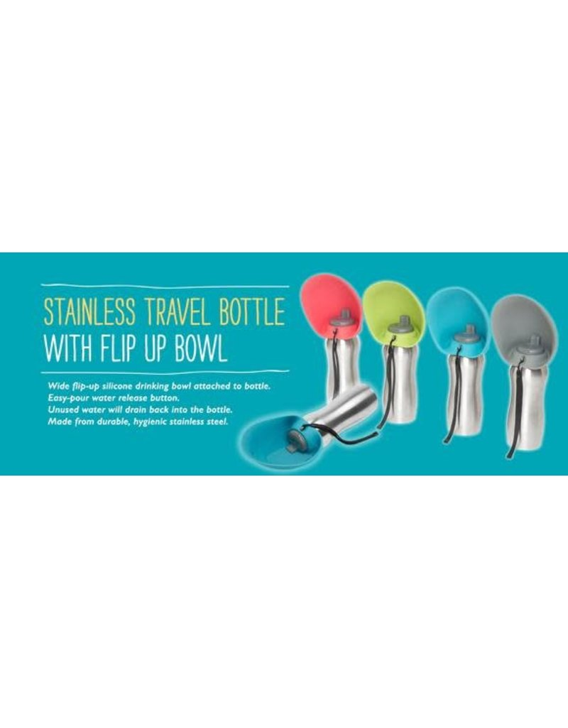 Messy Mutts MESSY MUTTS Stainless Steel Travel Water Bowl