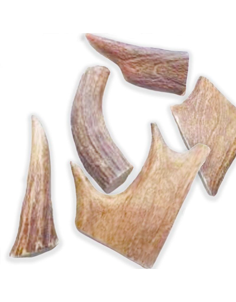 FISH & BONE Moose Antler