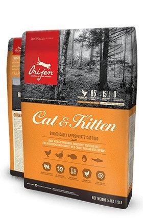 Champion Orijen Cat & Kitten