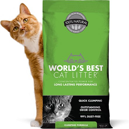 World's Best World's Best Original Litter Green