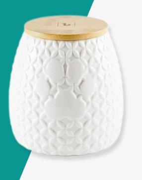 Be One Be One Ceramic Paw Cookie Jar