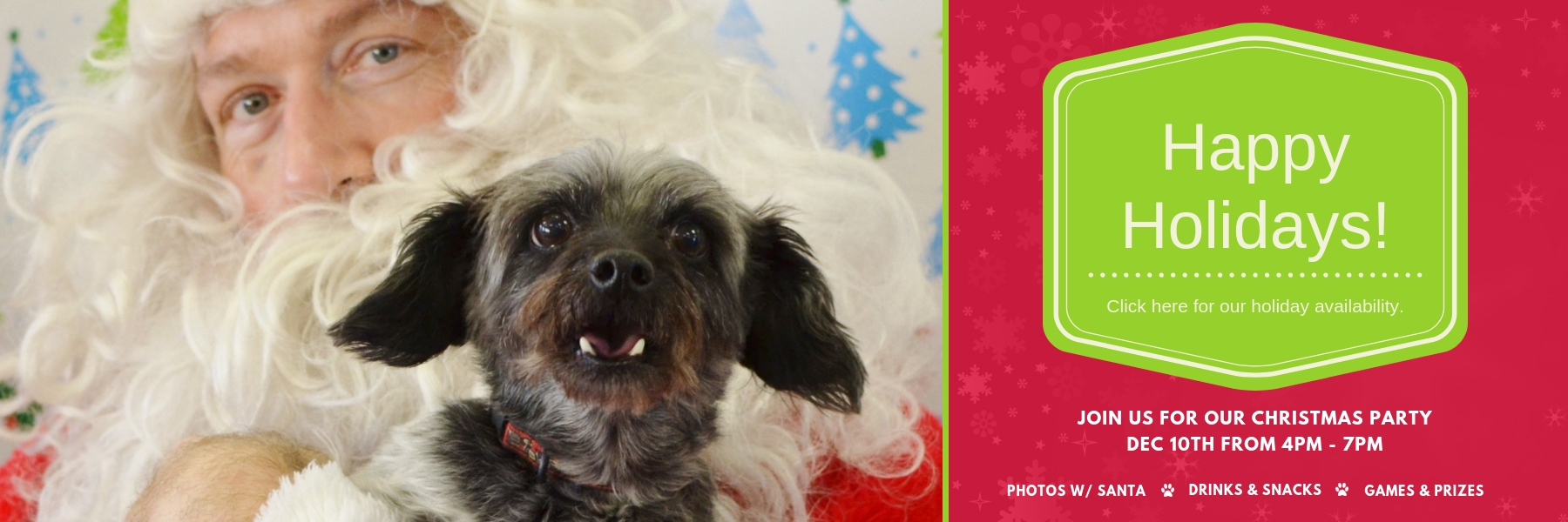 especially 4 pets holiday banner