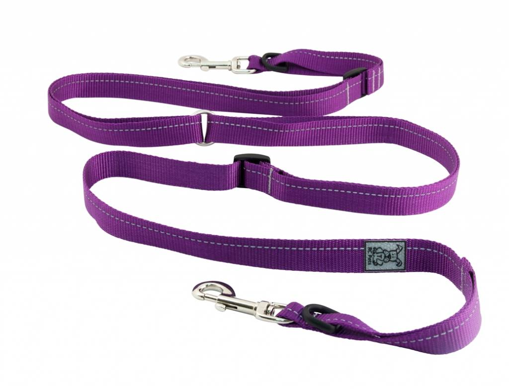 RC Pet RC Pets Active Lead