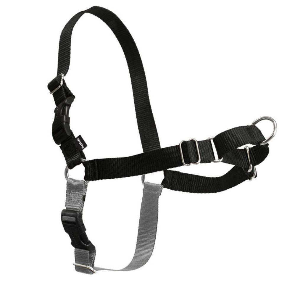 Pet Safe Easy Walk Harness Black