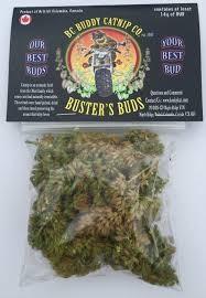 BC Buddy Catnip BC Buddy Buster Buds 14g