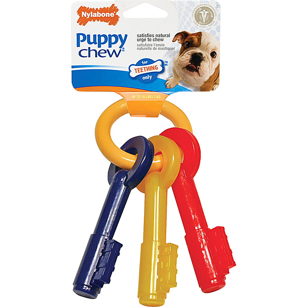 Nylabone Teething Keys
