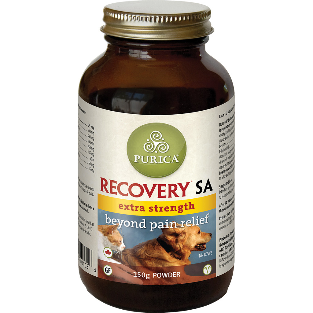 Purica Pet Recovery Extra Strength Powder 150gm