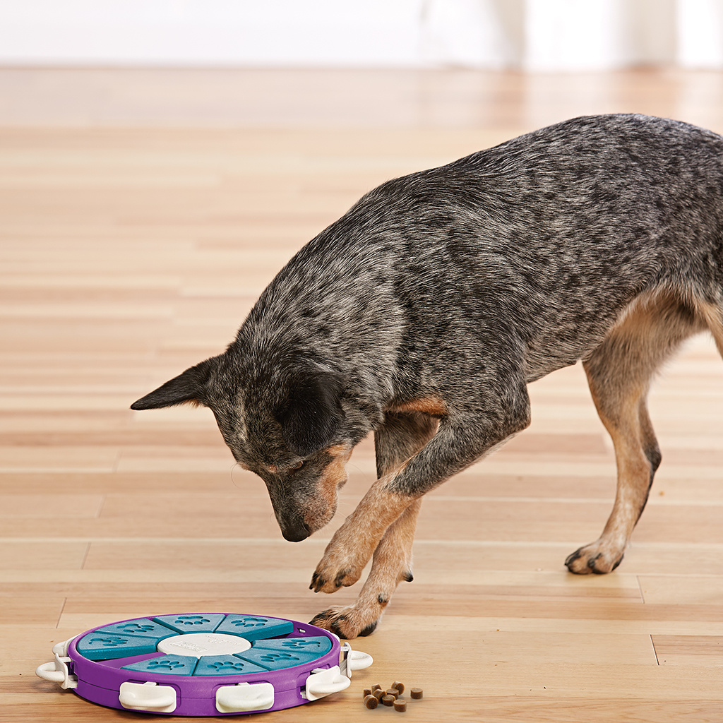 Nina Ottoson Dog Twister Puzzle