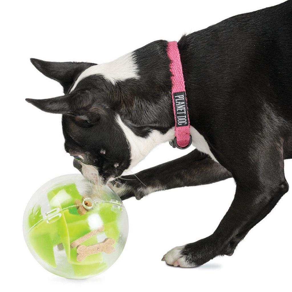 Planet Dog Orbee Tuff Mazee Green