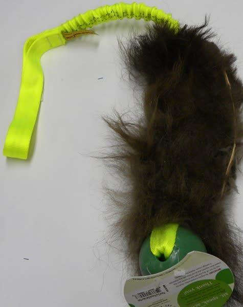 Salty Dog Salty Dog Buffalo Beastie Tail
