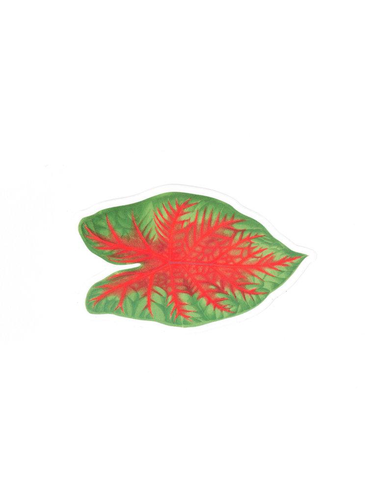 Caladium Leaf Sticker