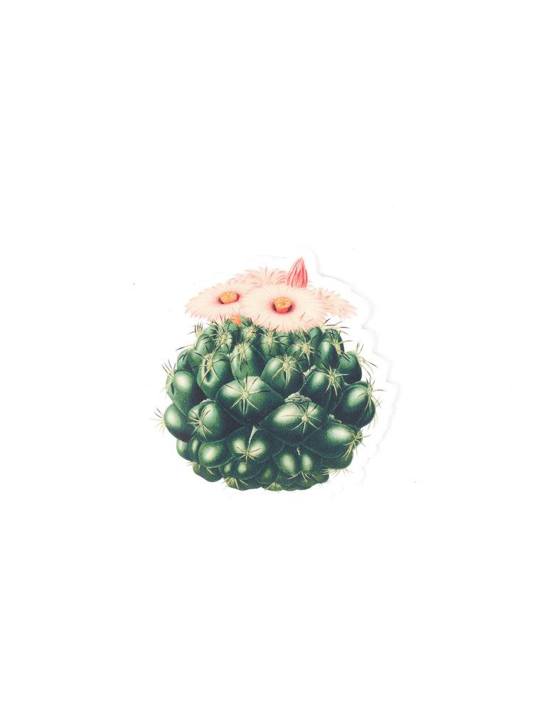 Pink Flower Cactus Sticker