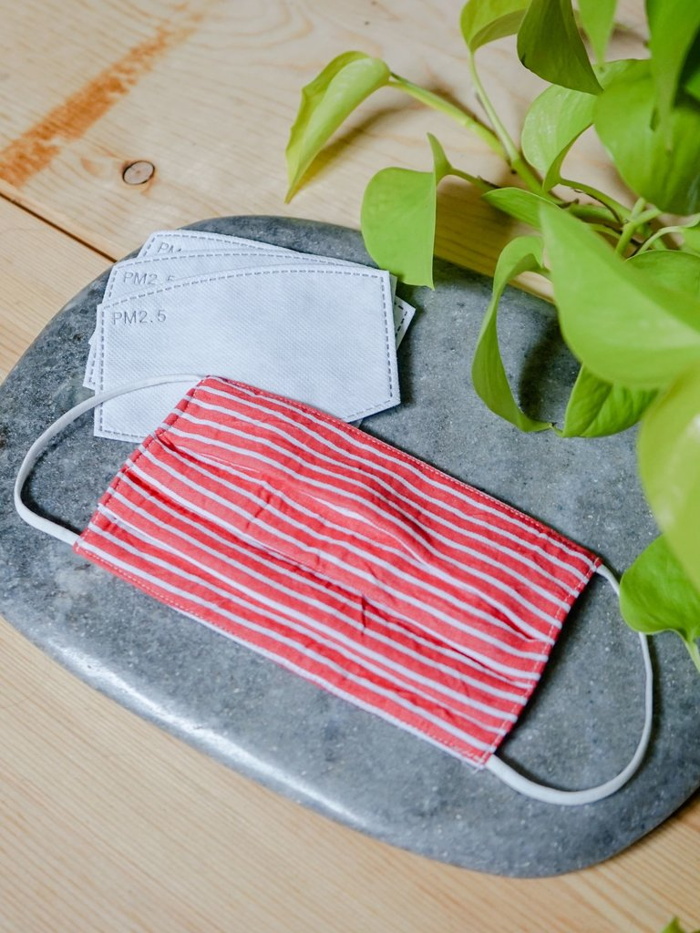 Red Stripe Adult Face Mask