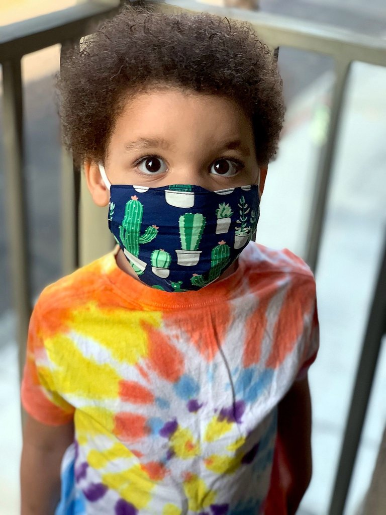 Cactus Navy Kids Face Mask